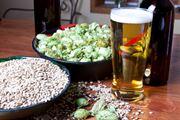 ricette birra