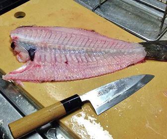 Tecniche pesce