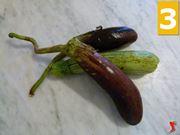 zucchine e melanzane