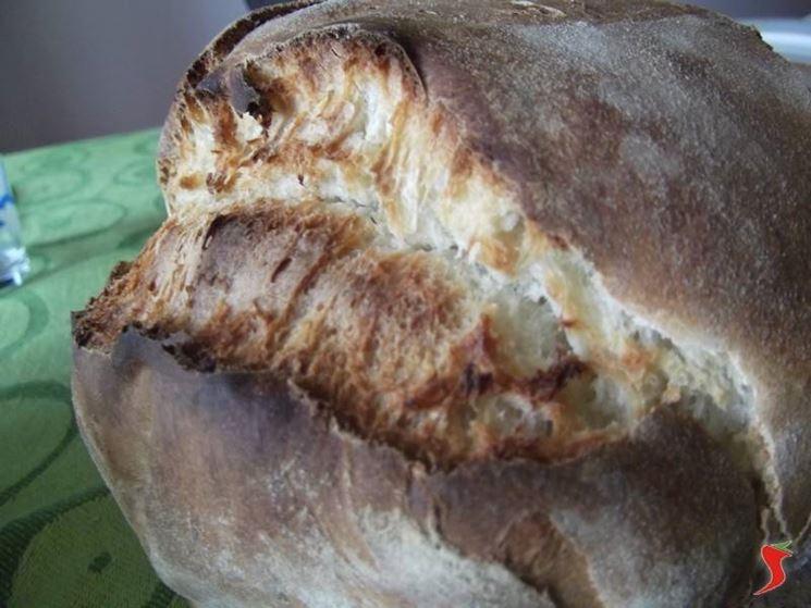 filone di pane casereccio