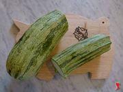 dividere la zucchina in due parti