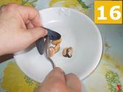 Preparare i molluschi
