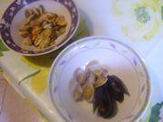 molluschi e decorazione
