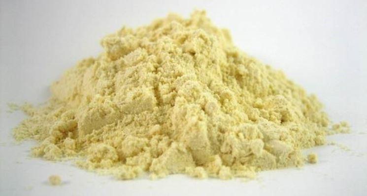 farina gluten free