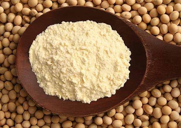 Farina di soia