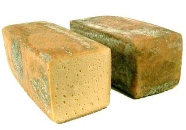 Il formaggio Dobbiaco