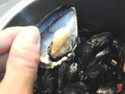 metto da parte la metà che contiene il mollusco