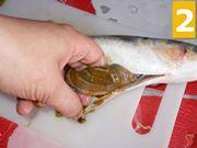 Sviscerare il pesce
