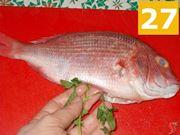 Finite di condire il pesce