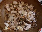 far asciugare i funghi